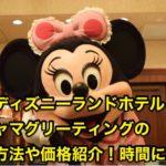 香港ディズニーパジャマグリの予約方法や価格紹介!時間に注意!