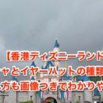 香港ディズニーイヤハの名前の入れ方と場所をマニアが画像つきで解説